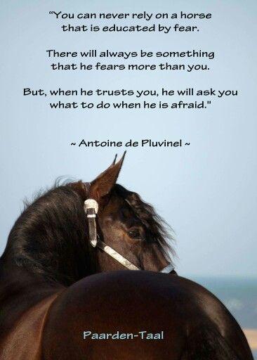 Quote Pluvinel